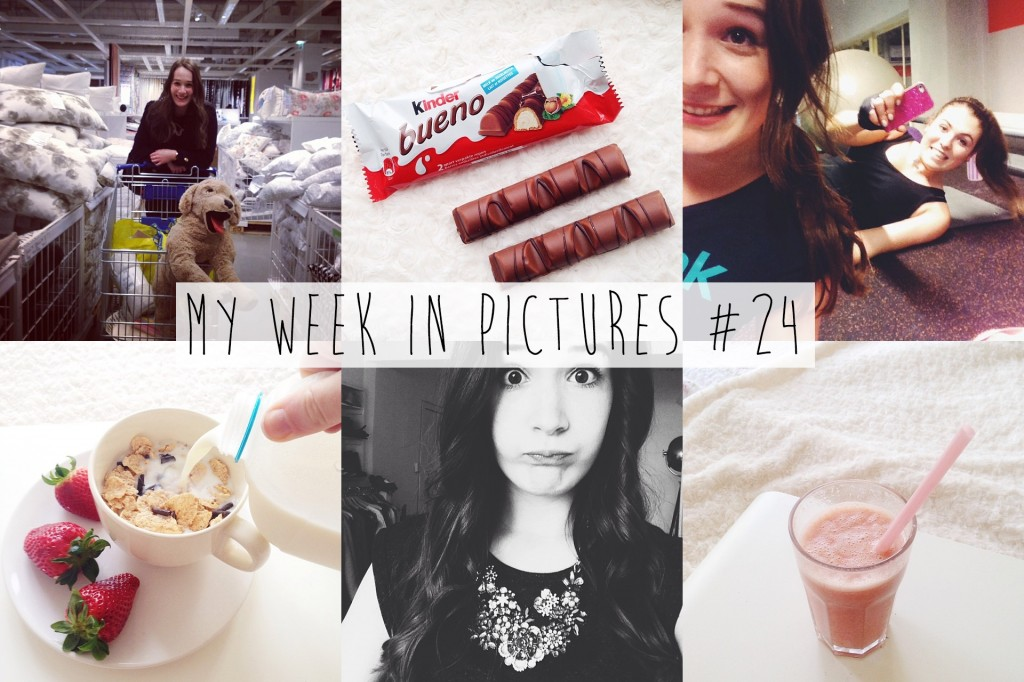 My week in pictures #24