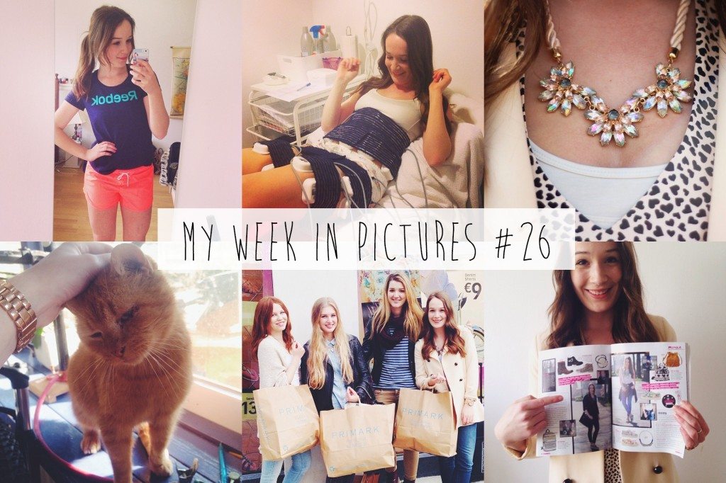 My week in pictures #26