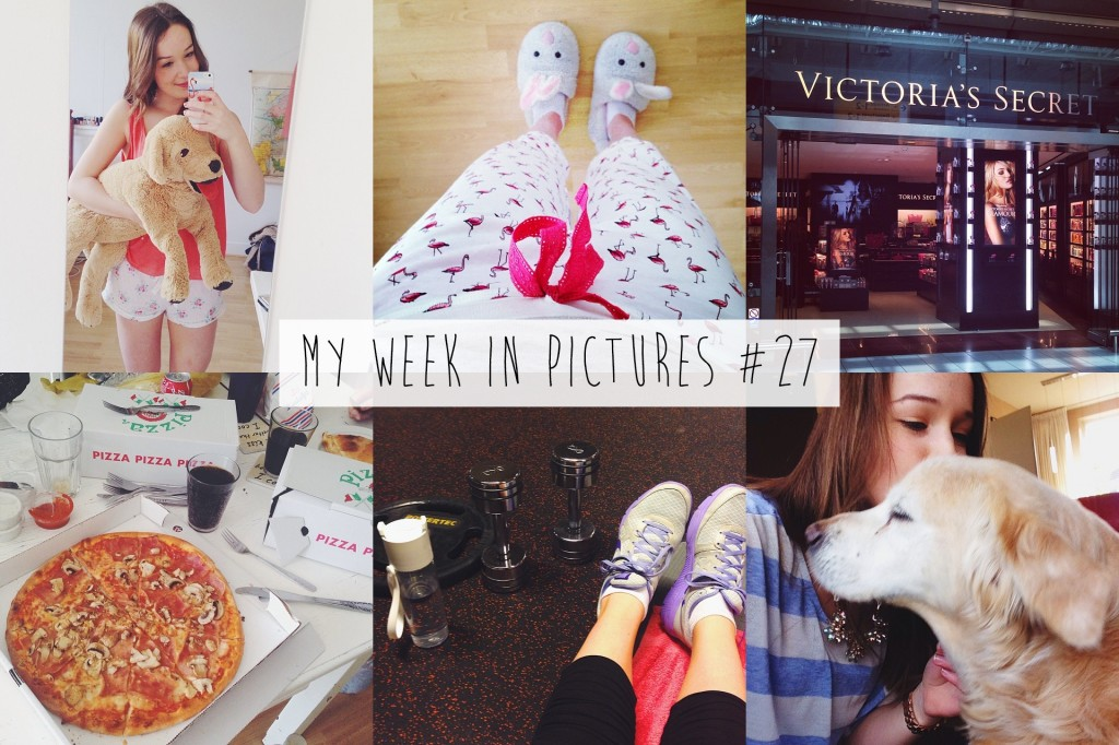 My week in pictures #27