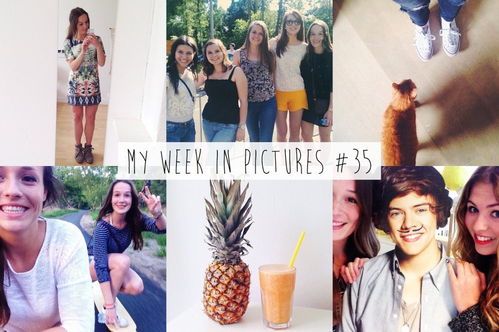 My week in pictures #35